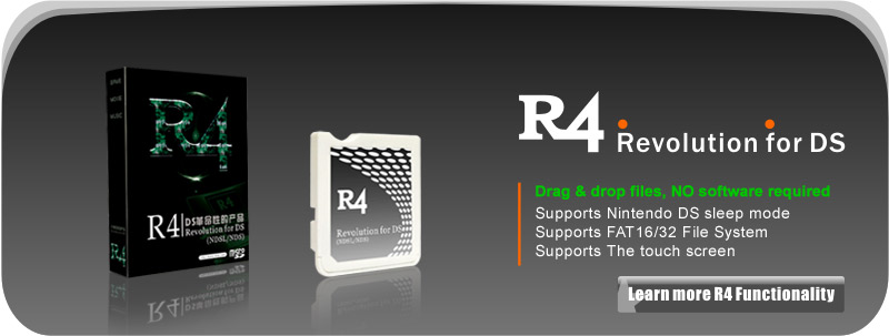 r4 nds software